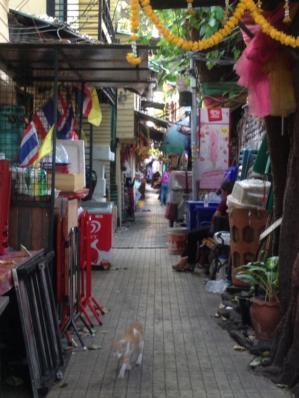 Just a quaint alley that beckoned with possibility as we strolled past